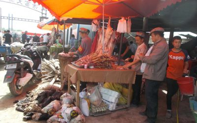 Kashgar Animal Markets 1 – food stalls