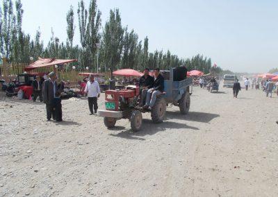 10 Kashgar AnimalDSCN0774