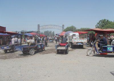 10 Kashgar AnimalDSCN0775